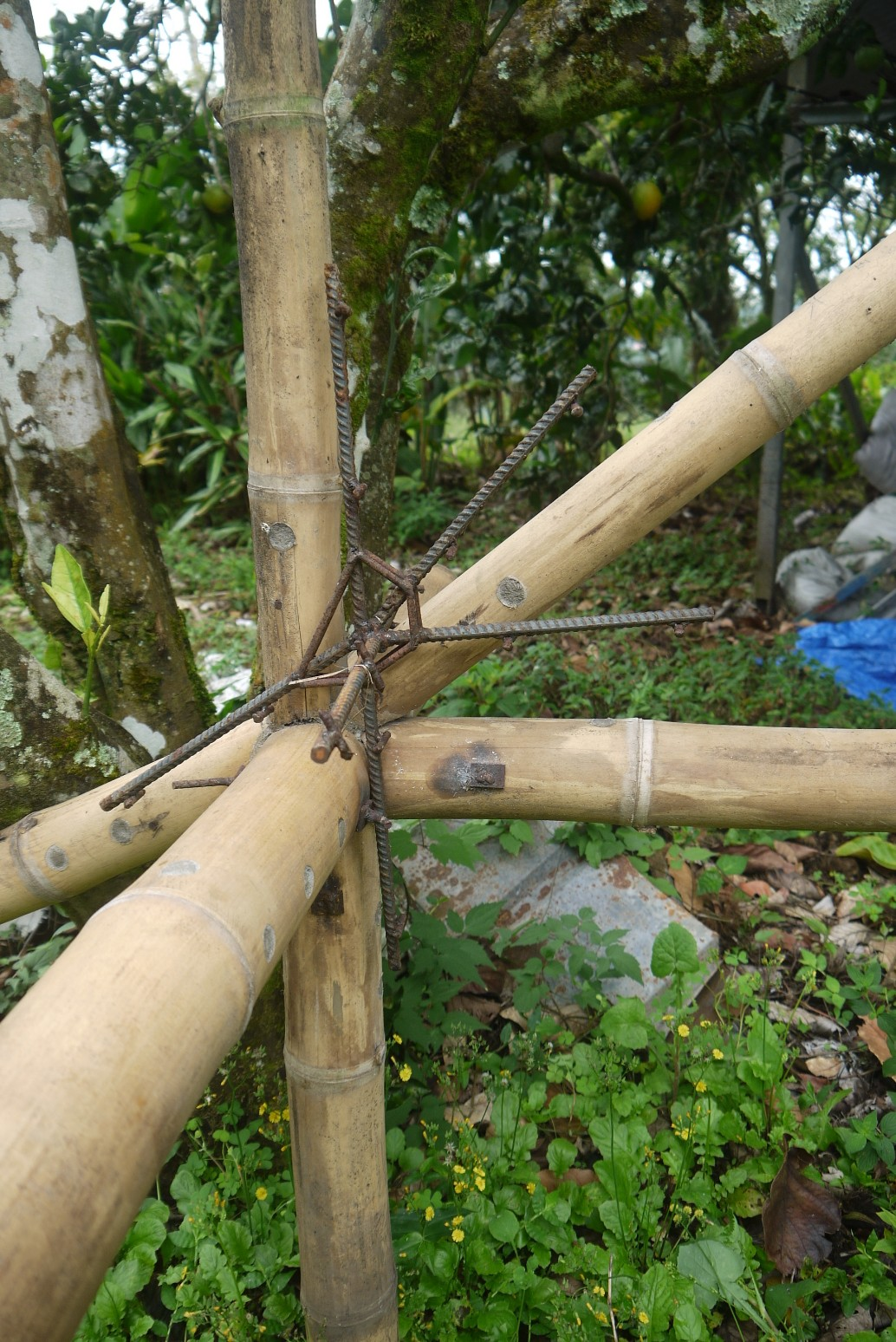 Connecting Bamboo Everything S Unlimited